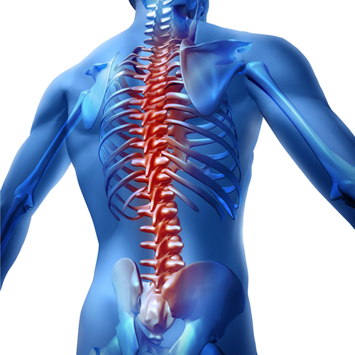 Spinal Stimulator Helps Patients Regain Movement